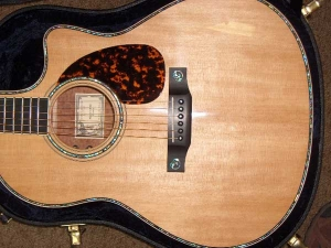 Larrivee Custom LV-10E, Quilted Sapele and Red Sitka Spruce 003, Mahogany/Spruce-2