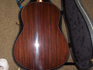 Larrivee L10 Special Edition, East Indian Rosewood/Sitka Spruce-2