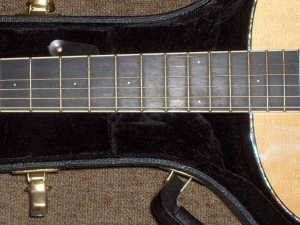 Larrivee L10 Special Edition, East Indian Rosewood/Sitka Spruce-9