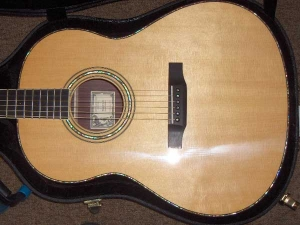 Larrivee L10 Special Edition, East Indian Rosewood/Sitka Spruce-11