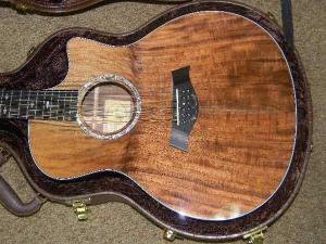 Taylor GSCE 12-String, Secret Grafted Walnut Top, Set #28-n