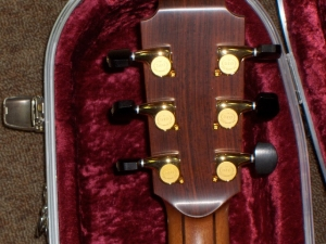 Lowden O50 Custom0017.JPG