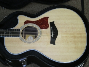 Taylor Fall Limited, 412CE  Rosewood and Sitka Spruce