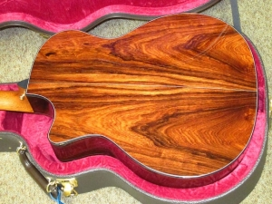 Taylor Custom GACE, Old-Growth Redwood/Rare Amazon Rosewood!