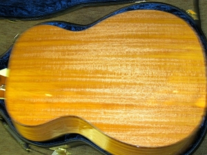 Larrivee Custom OM-05E, All Brazilian Mahogany, L.R. Baggs Anthem Pickup