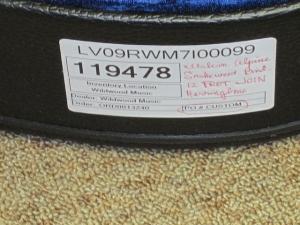 Larrivee Custom LV-09E, 12-Fret Join, Italian Alpine/East Indian Rosewood