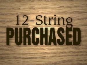 12string_purchased.jpg