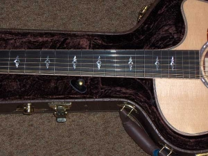 Taylor 856 CE, Grand Sympony 12-String, Rosewood and Spruce-8