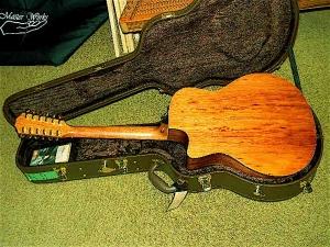 Taylor Custom GSCE 12-String, Palo Escrito Rosewood-1
