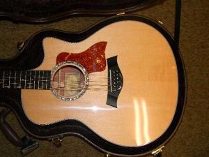 Taylor Custom GSCE 12-String, Palo Escrito Rosewood-14