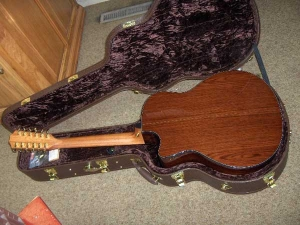 Taylor Custom GSCE 12-String, Amazon Rosewood/Engelmann Spruce-1