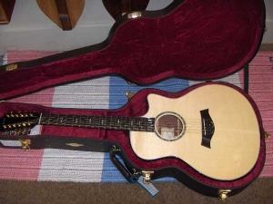 Taylor Custom GSCE 12-String #2, Amazon Rosewood/Engelmann Spruce-14